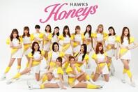 福岡ソフトバンクホークスのダンス&パフォーマンスチーム「ハニーズ」の今季メンバー17人が決定した。写真:球団提供